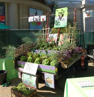 Garden Fest 2012 McNish (10) Vic Garden